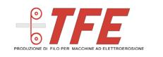logo tfe